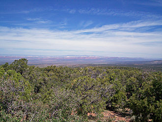 Kaibab Plateau - View of the Vermillion Cliffs from the Kaibab Plateau