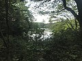 Kamataike Pond in Kasuya Research Forest of Kyushu University 5.jpg
