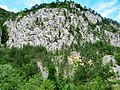 Kanjon Belog Rzava - panoramio (4).jpg