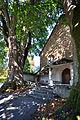 Kapuzinerkloster Solothurn - Lindenbäume - 02.jpg