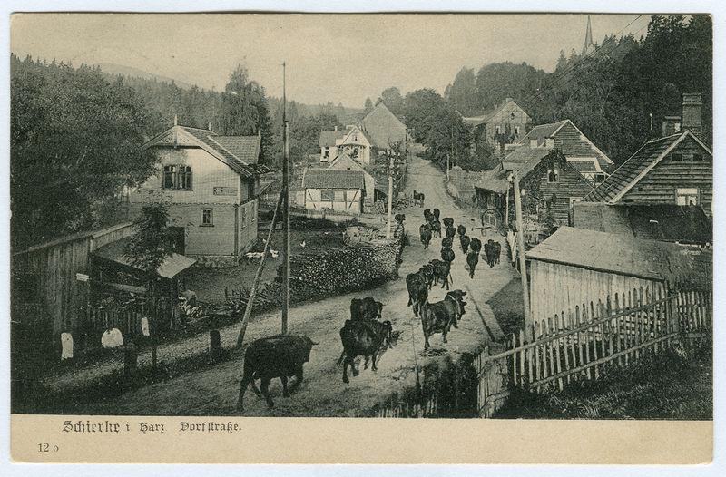File:Karl F. Wunder PC 0012o Schierke i. Harz. Dorfstraße. Ansichtsseite.jpg