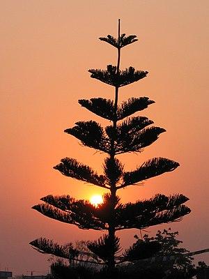 English: Kathmandu sunrise