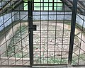 Kogasaka Stone Age Site.jpg