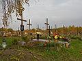 Komunalny Cmentarz Południowy w Warszawie 2011 (39).JPG