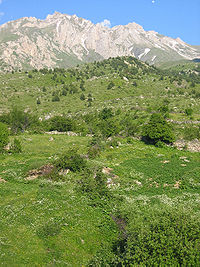 Pozita gjeografike e Shqiperise 200px-Korab