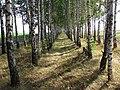 Kursky District, Kursk Oblast, Russia - panoramio (3).jpg