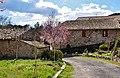 L'Abadal d'Avinyó - 1.jpg