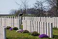 La Clytte Military Cemetery-5194.JPG