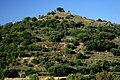 La Encina - panoramio.jpg