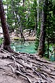 Lago verde - panoramio - patano.jpg