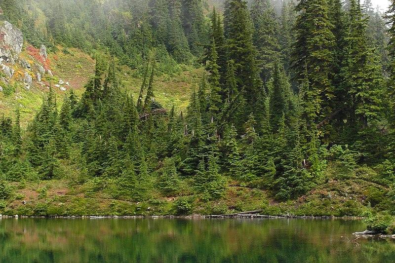 File:Lake Sally Anne (5038381086).jpg