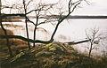 Landfjärden 1992a.jpg
