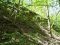 Landschaftsschutzgebiet Gestorfer Lößhügel - Steinbruch (2).JPG