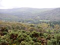 Laragh East, Co. Wicklow, Ireland - panoramio.jpg