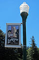 Larkspur 100 years banner.jpg