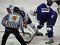 Latvia VS Slovenia at the IIHF World Hockey Championship 2008 - Anže Kopitar.jpg