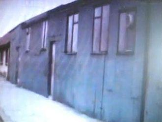 Shankill Butchers - The Lawnbrook Social Club (1979)