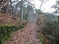 Le sentier cotier au bono - panoramio.jpg