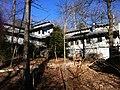 Len foote hike inn amicalola falls ga - panoramio (1).jpg