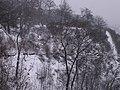 Letenské sady - panoramio (23).jpg