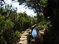 Levada 25 Fontes, Madeira, Portugal, June-July 2011 - panoramio (28).jpg