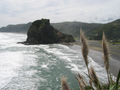 Lion Rock, Piha.png