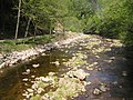 Litice nad Orlicí - řeka Divoká Orlice b.jpg