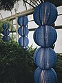 Longwood Gardens blue lantern Pennsylvania picture.jpg