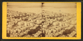 Looking N.W. from Bunker Hill monument, Charlestown, Mass, by Bierstadt Brothers.png