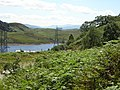 Looking towards Trawsfynydd - geograph.org.uk - 520062.jpg