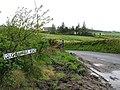 Loughnamarve Road, Pomeroy - geograph.org.uk - 175315.jpg