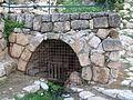 Maayan-ha-Tmarim-9954.jpg