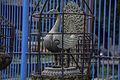 Machhindra Bahal Lalitpur-IMG 4786.jpg