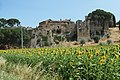 Magione, Province of Perugia, Italy - panoramio (25).jpg