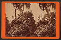 Magnolia-on-the-Ashley, by J. A. Palmer 2.jpg