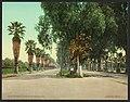Magnolia Avenue, Riverside, Cal-LCCN2008679611.jpg