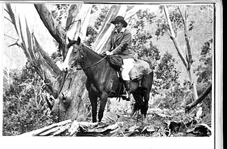 "Maisie Carr - Maisie Carr on her horse ""Sheila"", Bogong High Plains, 1949"