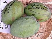 Mango AlampurBaneshan Asit fs.jpg