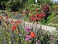 Maple Community Garden (747087351).jpg