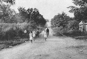 Marathon race during 1904 Summer Olympics.jpg