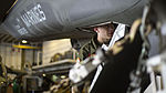Marine Corps Aircraft Maintainers keep Lightning II in the sky during OT-1 150524-M-ZZ999-001.jpg
