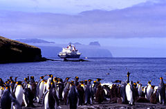 View of King Penguins on a beach (foreground), a ship (middleground) and a distant, rugged island (background)