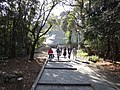 Marunouchi, Matsuyama, Ehime Prefecture 790-0008, Japan - panoramio (33).jpg