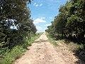 Mata-burro na saída da Rua Domingos Camponogara em direção a Av. Vista Alegre - panoramio.jpg