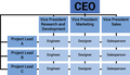 Matrix Structure Org Chart.png