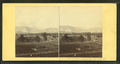 Meadows and ledges, from Sunset Bank, North Conway, N.H, by Soule, John P., 1827-1904 2.png