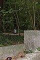 Międzyrzecz, Cmentarz 6.jpg