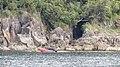 Milford Sound, South Island - panoramio (32).jpg