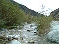 Mill Creek downstream at Warm Springs Truck Rd - panoramio.jpg