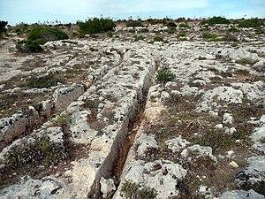 Misraħ Għar il-Kbir - Cart Ruts at Misrah Ghar il-Kbir